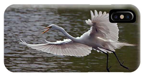 Great Egret In Flight IPhone Case