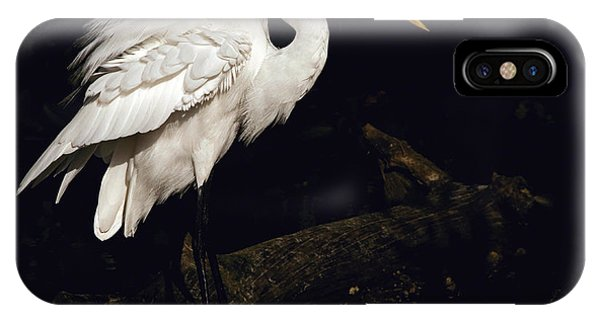Great Egret Ruffles His Feathers IPhone Case