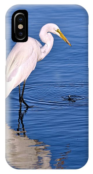 Great Egret With Shrimp IPhone Case