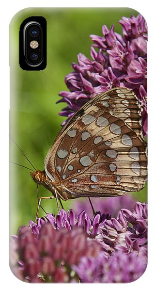 Great Spangled Fritillary Din194 IPhone Case