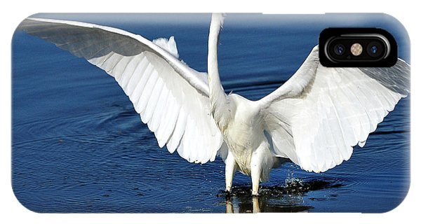 Great White Egret Spreading Its Wings IPhone Case