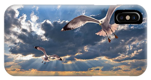 Greek Gulls With Sunbeams IPhone Case