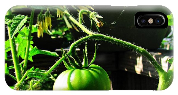 Green Tomatoes IPhone Case