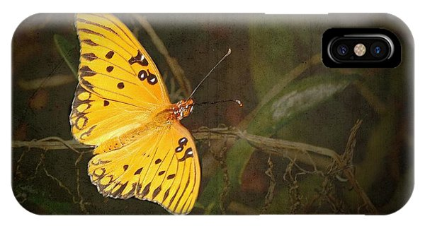 Agraulis Vanillae iPhone Case - Gulf Fritillary Butterfly by Rudy Umans