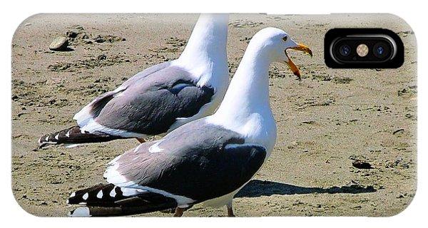 Gull Talk IPhone Case