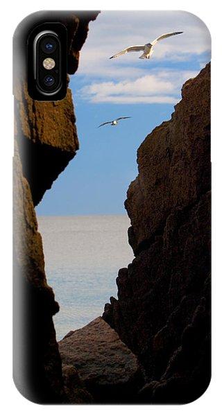 Gulls Of Acadia IPhone Case