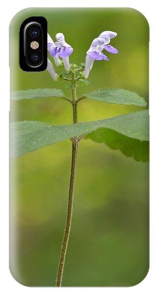 Hairy Skullcap II IPhone Case