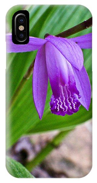 Crossville iPhone X Case - Hardy Orchid 2 by Douglas Barnett