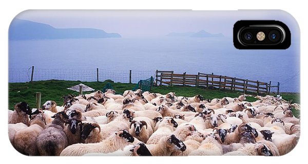 Farm iPhone Case - Herding Sheep, Inishtooskert, Blasket by The Irish Image Collection