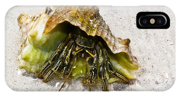 Hermit Crab Phone Case by Bill Rogers