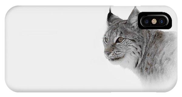 Lynx iPhone Case - Hi Key Lynx by Andy Astbury