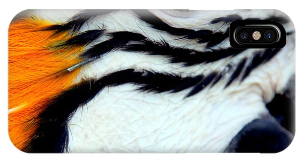 Macaw iPhone Case - His Watchful Eye by Karen Wiles