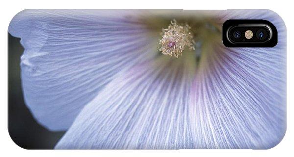 Hollyhock (alcea Rosea) Phone Case by Maxine Adcock