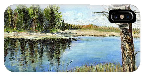 Home At Dragonfly Pond IPhone Case
