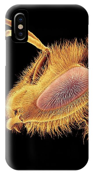Honeybee iPhone X Case - Honey Bee, Sem by Susumu Nishinaga