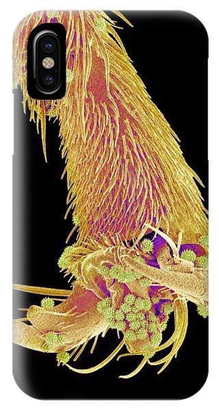 Honeybee iPhone X Case - Honeybee Leg, Sem by Susumu Nishinaga
