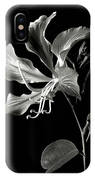 Hong Kong Orchid In Black And White IPhone Case