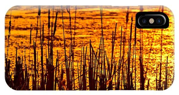 Horicon Marsh iPhone Case - Horicon Cattail Marsh Wisconsin by Steve Gadomski