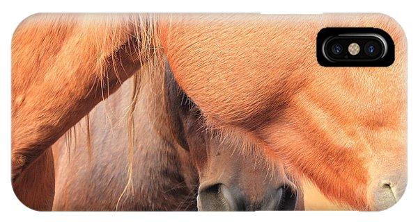 Horse Hide 2 IPhone Case