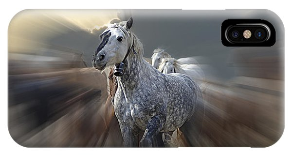 Horse Of A Different Color Zoomed IPhone Case
