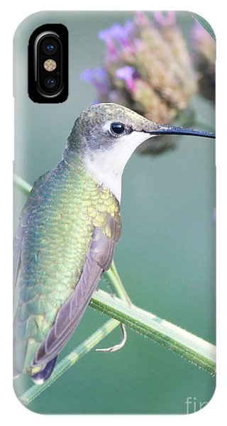 Hummingbird At Rest Phone Case by Robert E Alter Reflections of Infinity