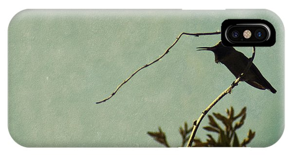 Hummingbird On Winter Wisteria IPhone Case