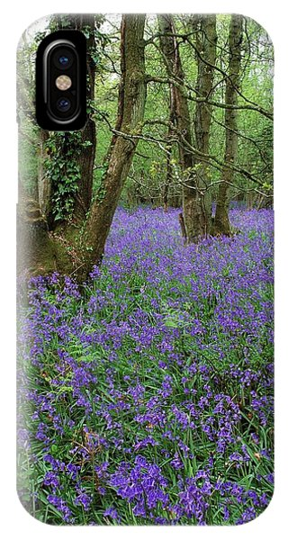 Hyacinthoides Nonscriptus. Phone Case by Bob Gibbons