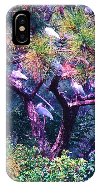Ibis-gone To Roost IPhone Case
