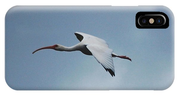 Avian iPhone Case - Ibis In Flight by David Lane