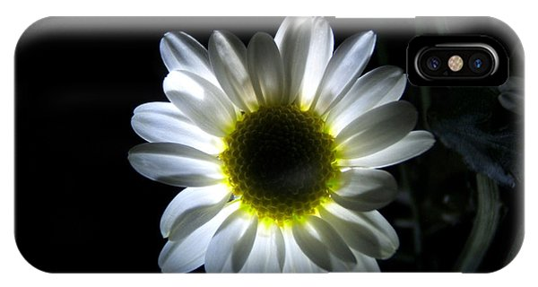 Illuminated Daisy Photograph IPhone Case
