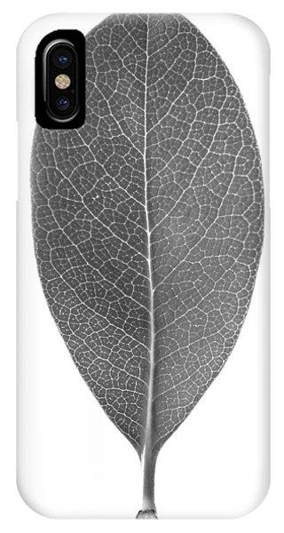 Indian Hawthorn Leaf IPhone Case