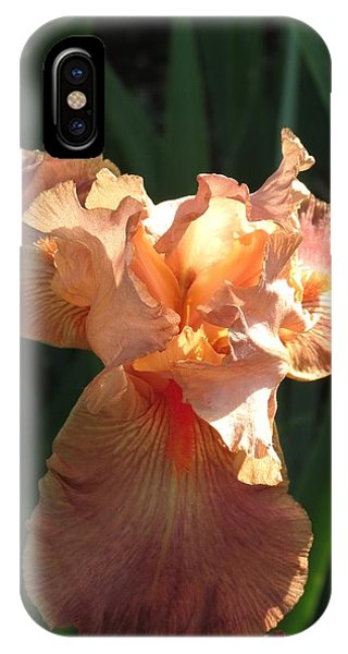 Iris Peach IPhone Case