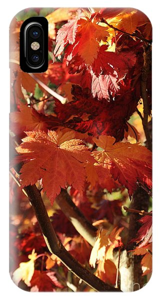 Japanese Maple 1 IPhone Case