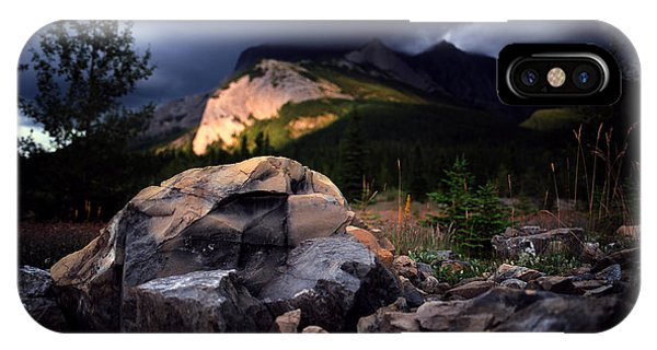 Jasper - Summer Storm Phone Case by Terry Elniski