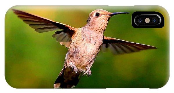 Stop Action iPhone Case - Joyful Hummingbird by Carol Groenen