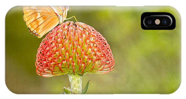 Julia Longwing Butterfly On Exotic Flower IPhone Case