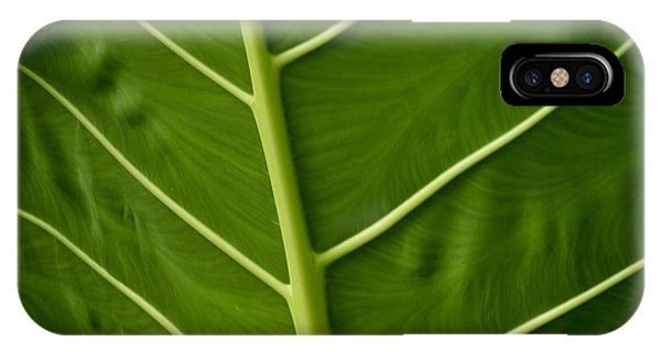 Jungle Leaf IPhone Case