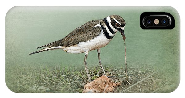 Killdeer iPhone Case - Killdeer And Worm by Betty LaRue
