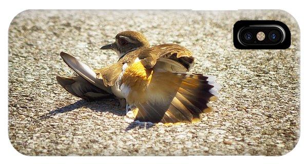Killdeer Broken Wing Act IPhone Case