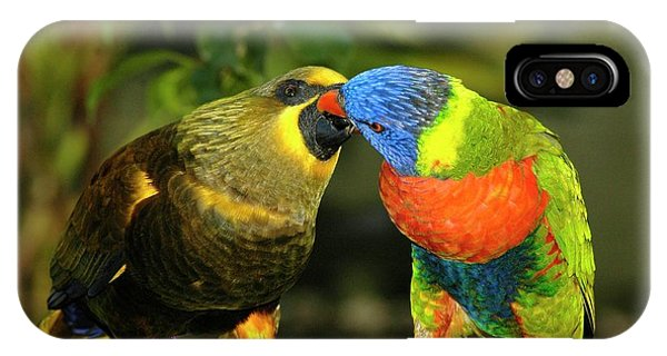 Kissing Birds IPhone Case