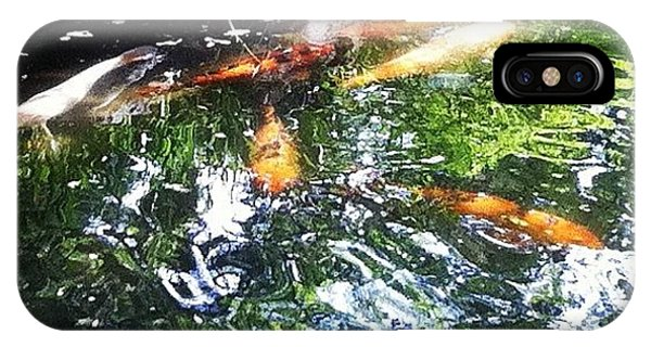 School iPhone Case - #koi #pond #water #nishikigoi #carp by Victor Wong
