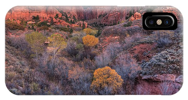 Kolob Canyon IPhone Case