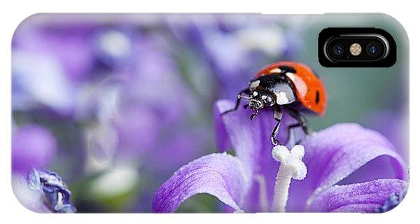 Beetle iPhone Case - Ladybug And Bellflowers by Nailia Schwarz