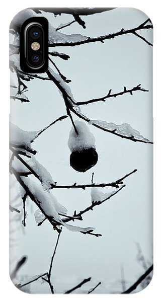 Last Apple With Snow Phone Case by Tom Singleton
