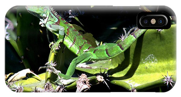 The Nature Center iPhone Case - Leapin Lizards by Karen Wiles