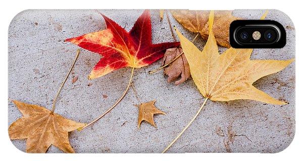Leaves On The Sidewalk IPhone Case