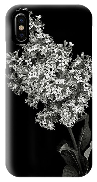 Lilac In Black And White IPhone Case