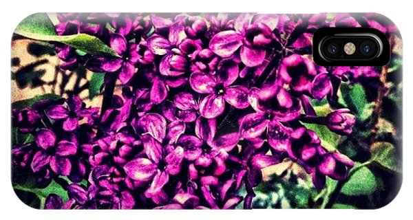 Fineart iPhone Case - Lilac Intensity by Paul Cutright