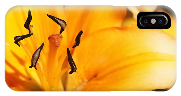 Lily 1 IPhone Case