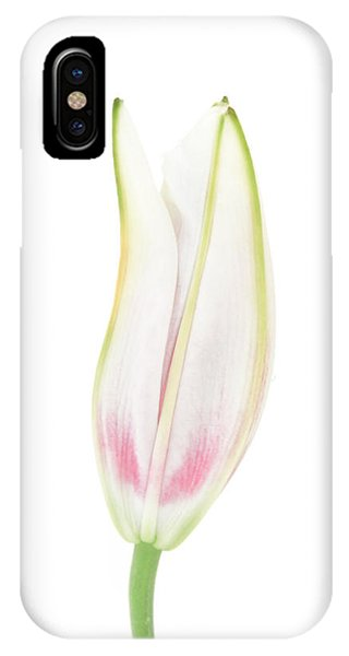Lily In The Snow IPhone Case